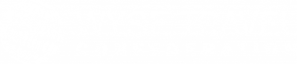 WYSE Travel Confederation Jobsboard